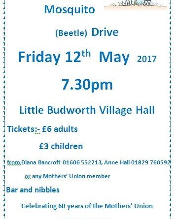 Mosquito Drive, Friday 12th May