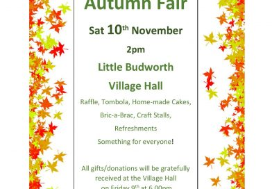 10th November 2pm – Autumn Fair