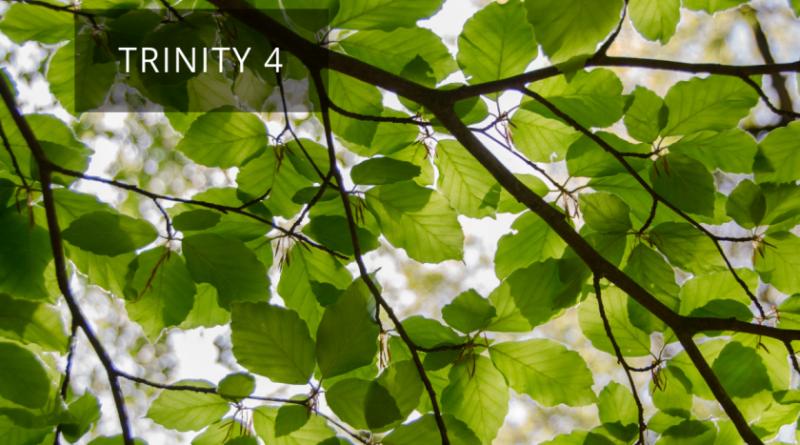 27th June – Trinity 4